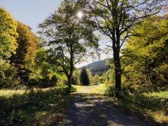 Frauenwald-am-vorstau-talsperre-schoenbrunn.JPG